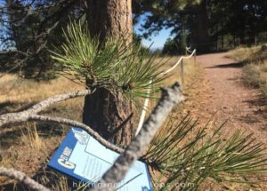 a sign guiding hikers along the sensory trail in Boulder Colorado