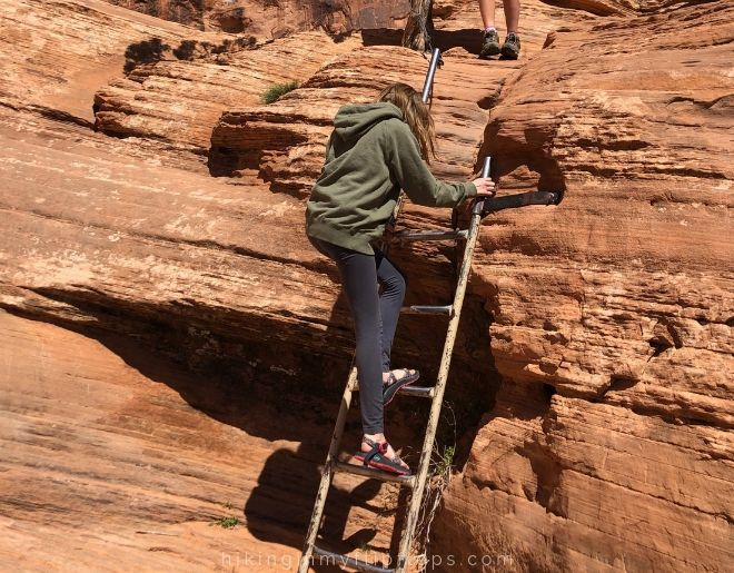 ladder on corona arch trail in moab UT