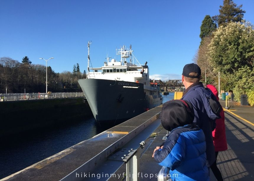 watching a ship come into the locks at Chittenden Locks