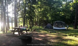 put tents up under the shade of trees how to keep a tent cool while camping in hot weather