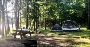 kids at a shaded campsite, one of the considerations for how to choose a campground